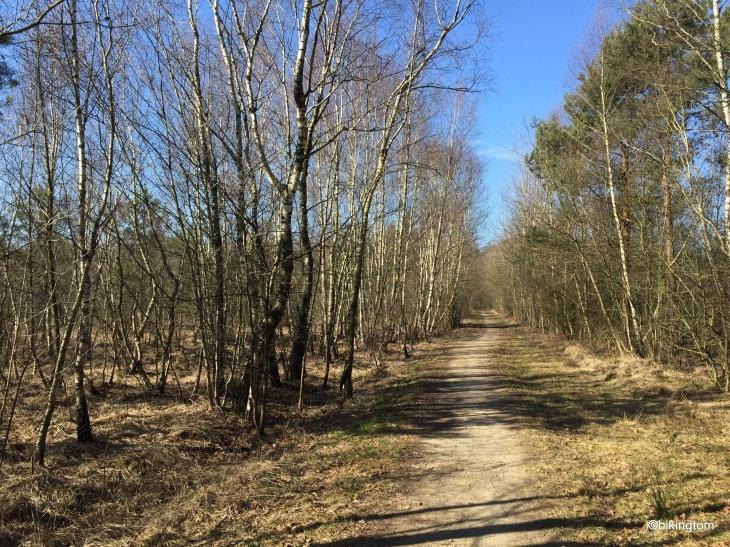 Radweg der Grafschafter Fietsentour durch das Venn