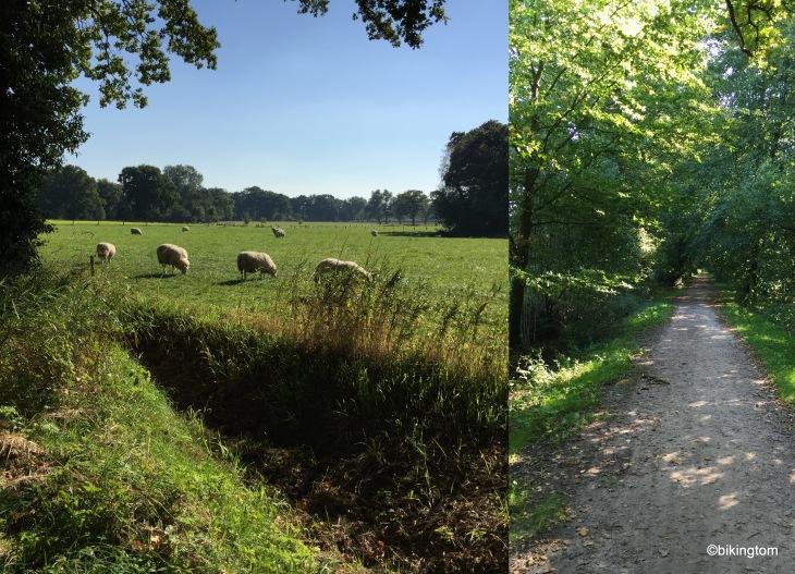 Durch Felder und Wiesen